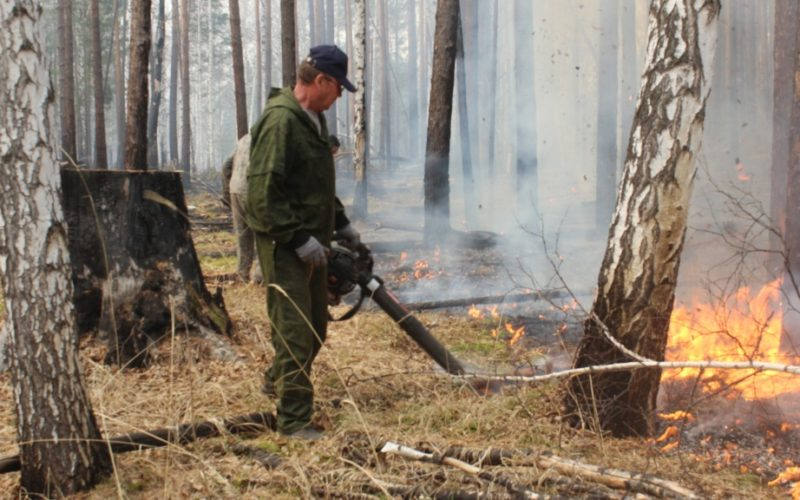 Первые лесные пожары произошли в Иркутской области