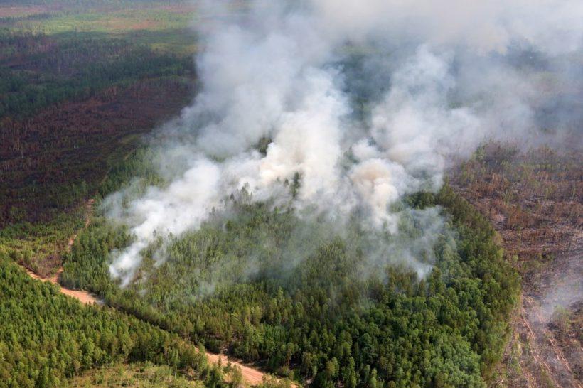 Количество пожаров в Иркутской области снижается
