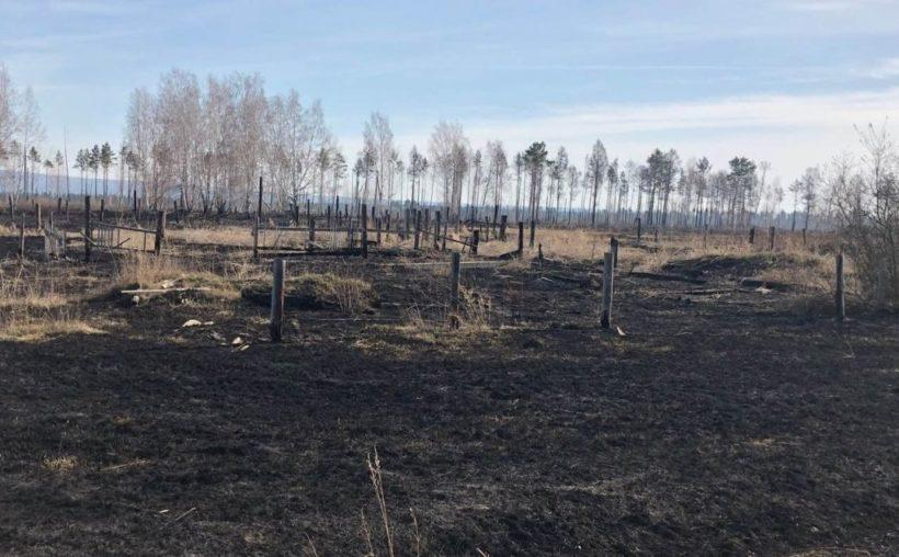 Режим ЧС действует в пяти районах Иркутской области из-за пожаров