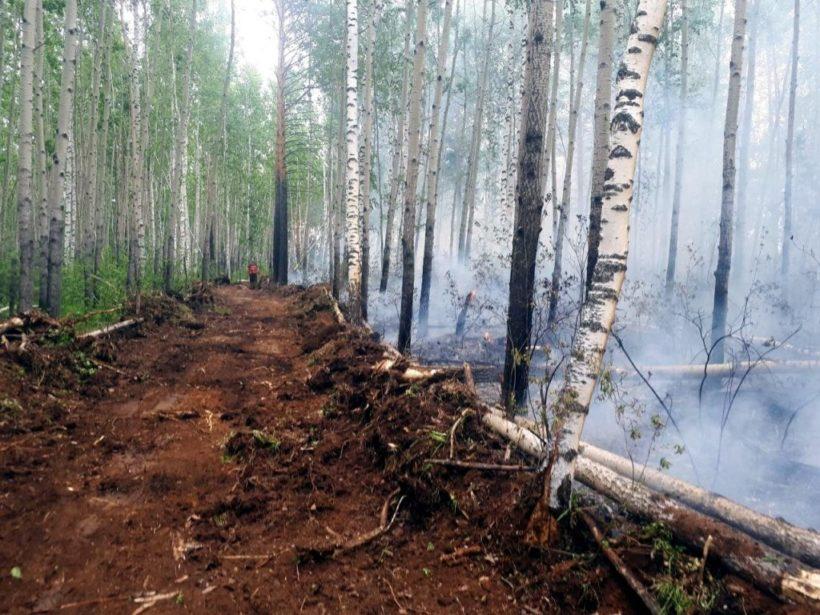 Режим ЧС из-за пожаров действует уже в семи районах Иркутской области