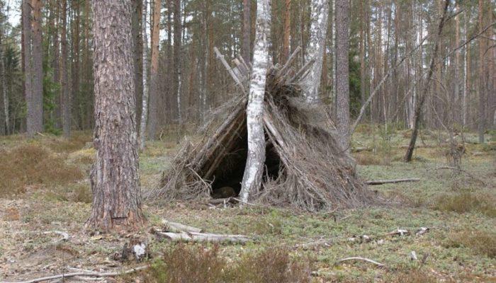 12-летний братчанин после ссоры с матерью ушел из дома и заночевал в шалаше в лесу