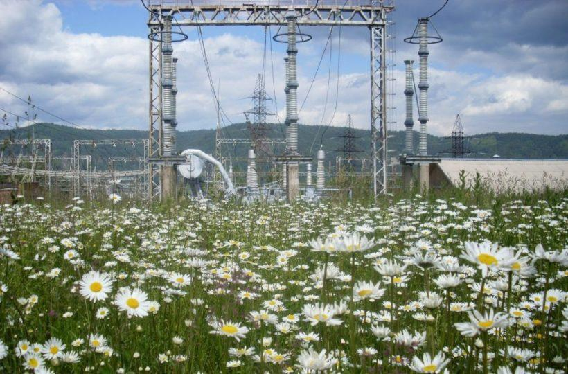 Крупный энергосетевой проект начали реализовывать в Иркутской области