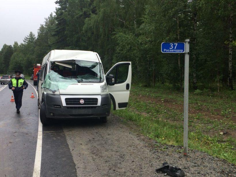 В Шелеховском районе столкнулись маршрутка и легковое авто