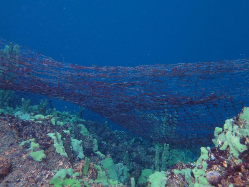 Рыболовные сети – большая угроза чистоте дна Байкала