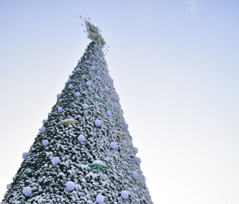 В Иркутске начался монтаж главной новогодней ёлки