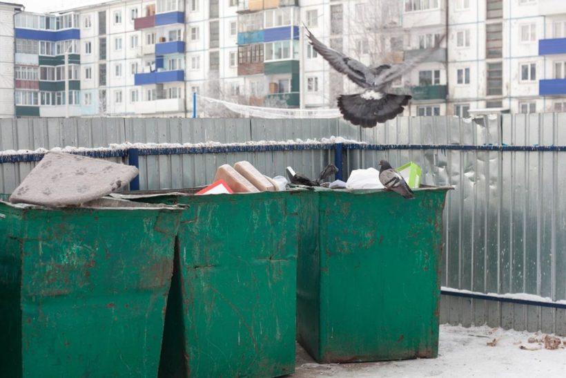 Жители Иркутской области не хотят утонуть в мусоре
