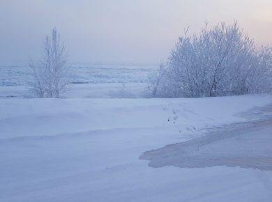 Ангара вышла из берегов, подтопив дорогу к СНТ в Иркутском районе