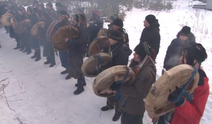 Прокуратура проводит проверку по сообщению СМИ о сожжении верблюдов под Ангарском