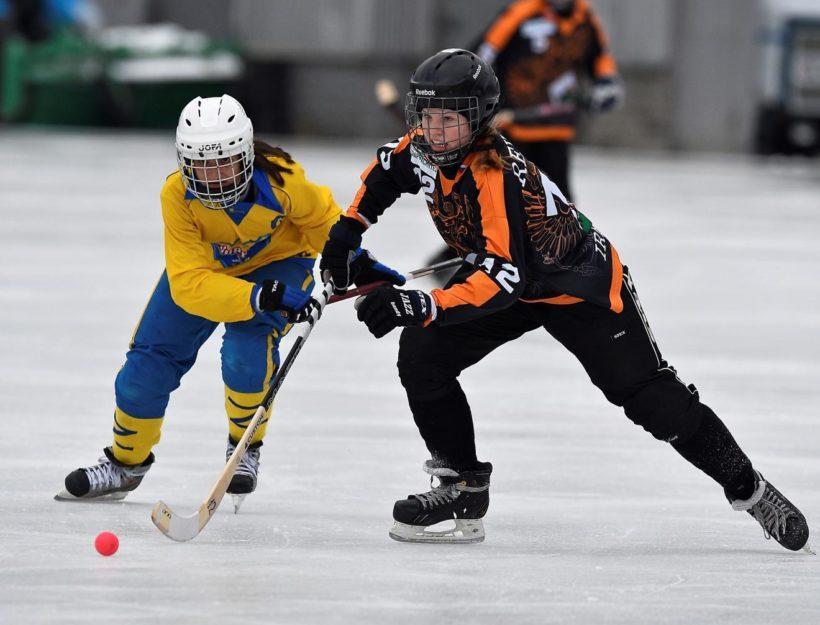 В Иркутске стартует Чемпионат России по хоккею с мячом среди женских команд