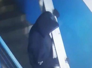 Полиция Иркутска нашла похитителя дорогой стремянки