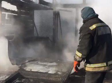 """Приют для животных """"Ной"""" горел в Иркутске 6 февраля"""