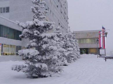 Шесть общественных пространств благоустроят в Братске в 2019 году