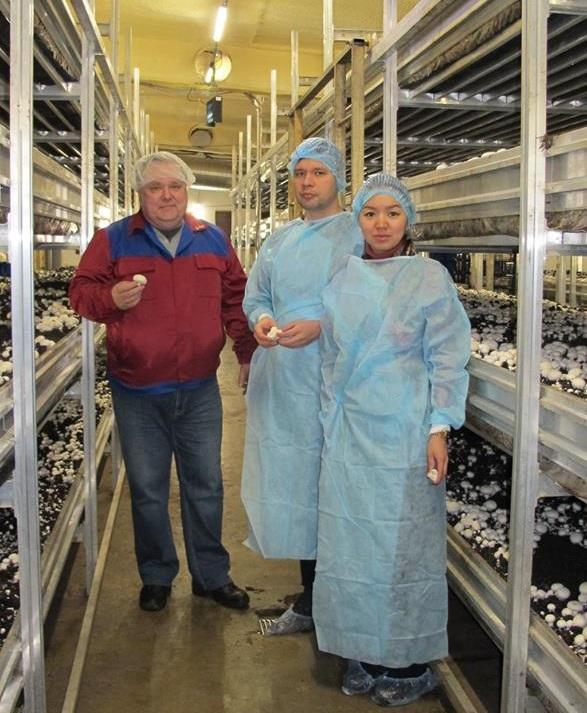 Монголия заинтересовалась сотрудничеством с первой в Приангарье фермой по выращиванию шампиньонов