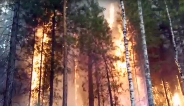 Пожар произошел в селе Моты