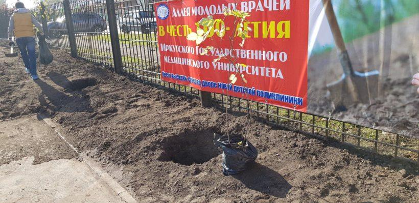 Аллею молодых врачей высадили в Иркутске