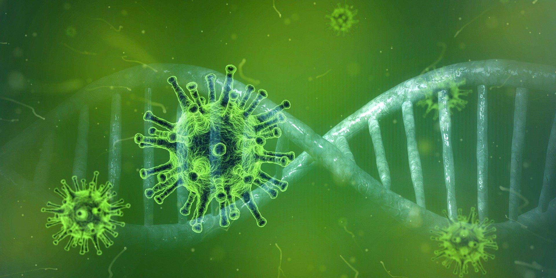 75 случаев коронавируса выявили в Иркутской области за сутки