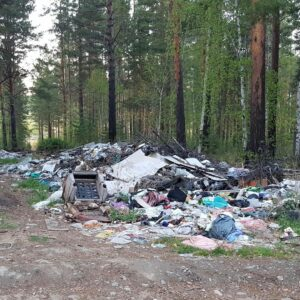 Свалку опасных бытовых отходов ликвидируют в районе рабочего поселка Маркова