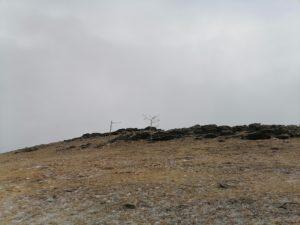 Уже 30 афтершоков зафиксировано после землетрясения в Монголии 12 января