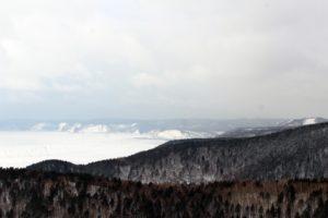 Особый противопожарный режим в лесах Иркутской области введут с 10 апреля