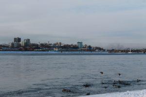 На время нереста в Иркутской области установили запрет на ловлю рыбы