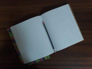 Тотальный диктант в Иркутске написали 516 человек