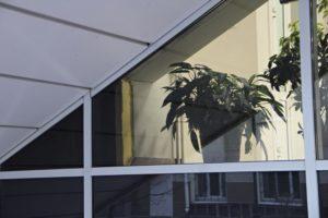 Учреждения образования в Приангарье с 1 по 10 мая работать не будут