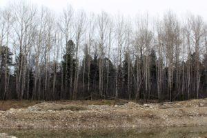 26 лесных пожаров зарегистрировано в Иркутской области с начала пожароопасного сезона
