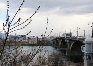 128 случаев COVID выявили в Иркутской области за сутки