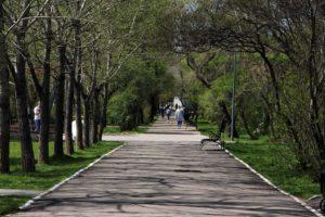 Иркутская область вновь заняла последнее место экологического рейтинга России