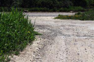 Советник главы Приангарья: На всех этапах строительства дороги на Ольхоне проект сопровождают экологи и учёные