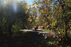 Осень в Иркутске сегодня
